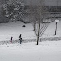 Winter Footprint No. 6 by Juan Contreras