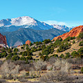 Winter Garden Of The Gods Colorado by Steve Krull