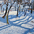 Winter Ladmanlow, Buxton, Derbyshire by Andrew Macara