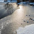 Winter Landscape At Whitesbog by Louis Dallara