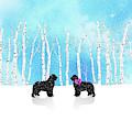 Winter Romance by Christine Mullis