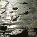 Winter Sun On The Tide by Victor Lord Denovan