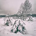 Winter's Coming. Horytsya, 2018. by Andriy Maykovskyi