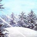 Winters Solstice by Joel Tesch