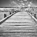 Wooden Path At Dungeness by David Resnikoff