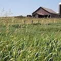 Wyoming Farm by Dylan Punke