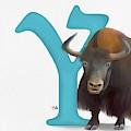 Y Is For Yak by Tammy Lee Bradley