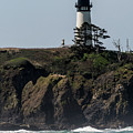 Yaquina Light And Surf by Robert Potts