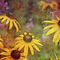 Yellow Among Purple 4234 Idp_2 by Steven Ward