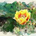 Yellow Hottie by Susan Warren
