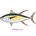 Yellowfin Tuna by Kevin Putman