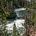 Yellowstone Rapids by Laurel Powell
