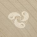 Yin Yang Symbol Crop Circle by Simon Marcus Taplin