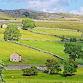 Yorkshire Dales by Martyn Arnold