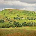 Yorkshire Landscape by Martyn Arnold