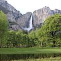 Yosemite Falls  by Christy Pooschke