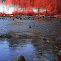 Yosemite River In Red by Jon Glaser