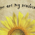 You Are My Sunshine by Pam  Holdsworth