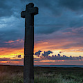 Young Ralph Cross, North York Moors by David Ross