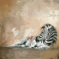 Zebra At Rest by Jai Johnson