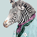 Zebra Blue by Animal Crew