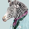 Zebra Blue by Animal Crew