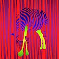 Zebra by David Arrigoni