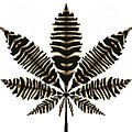 Zebra Pattern Marijuana Leaf 2 by Joan Stratton