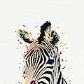 Zebra Watercolor Painting by Nikolay Radkov
