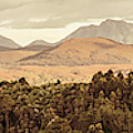 Zeehan And Beyond by Jorgo Photography - Wall Art Gallery