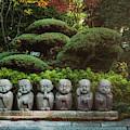 Zen Garden by Matt Shiffler