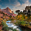 Zion And The by Peter Kunasz