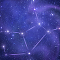 Zodiacal Constellations. Virgo by Sololos