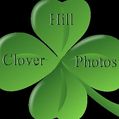 Clover Hill Photos - Artist
