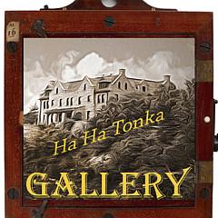 Ha Ha Tonka Gallery - Artist
