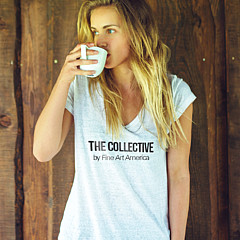 The Collective - Artist
