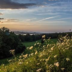 The Hudson Valley - Artist
