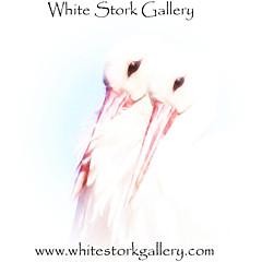 White Stork Gallery