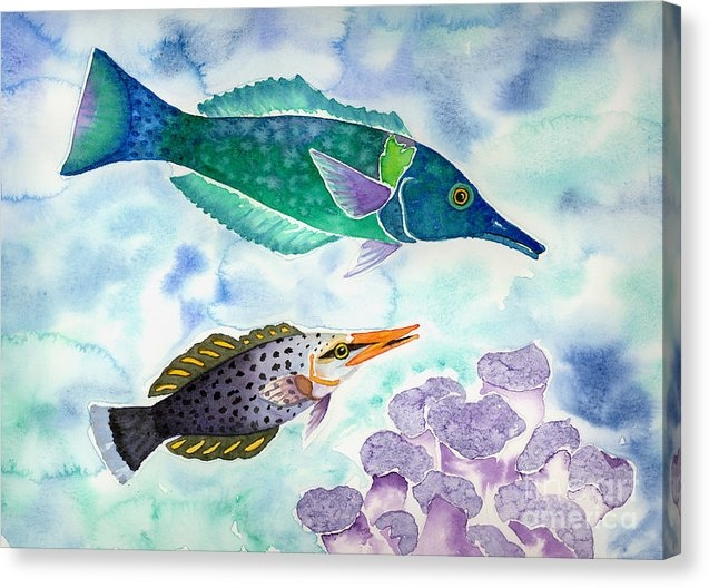 Lucy Arnold - Bird Wrasse Print