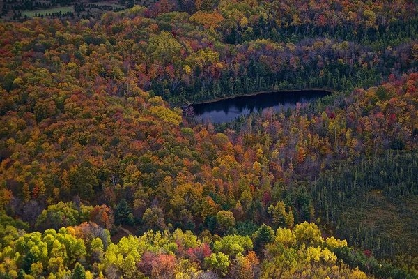 Mike Mulvahill - Fall Color Aerial  Print