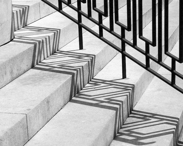 Rona Black - Deco Shadow Print