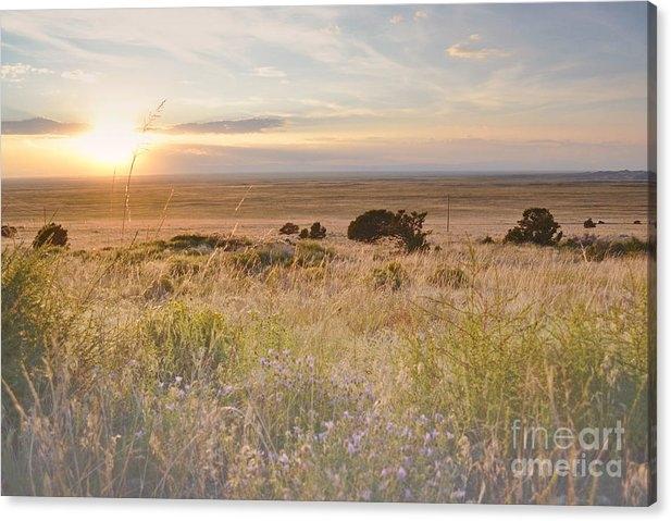 Andrea Hazel Ihlefeld - Colorado Field Sunset Lan... Print