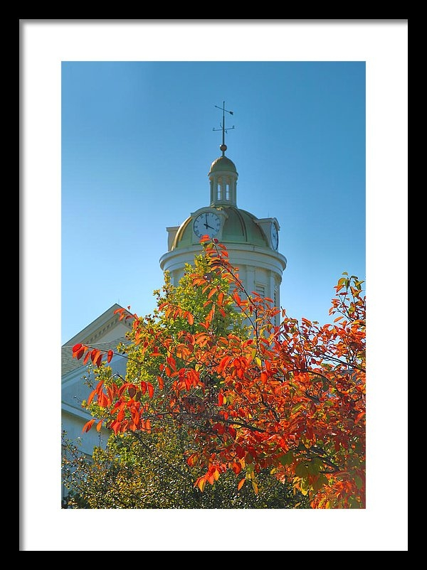 Steven Ainsworth - City Hall Dome And Tree  Print