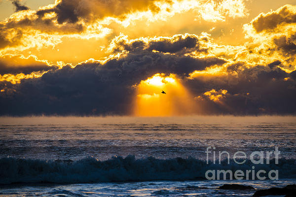 Dan Przygocki - Morning Sea Smoke Print