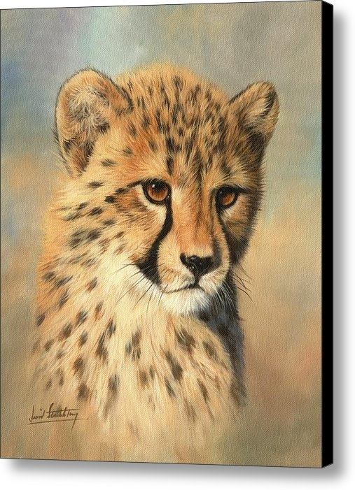 David Stribbling - Cheetah Cub Print