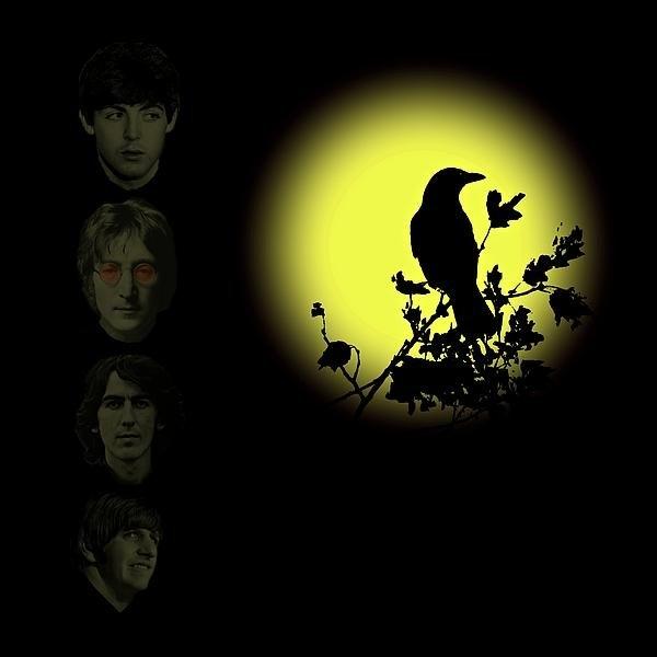 David Dehner - Blackbird Singing in the ... Print