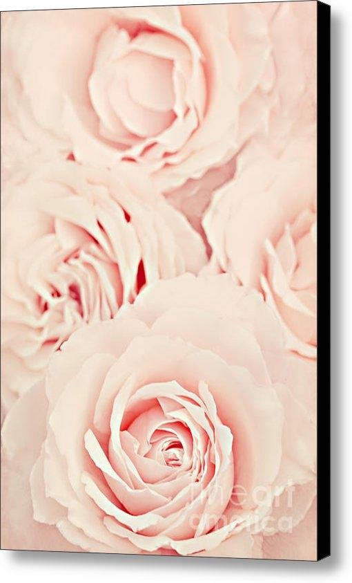 Diana Kraleva - Roses Print