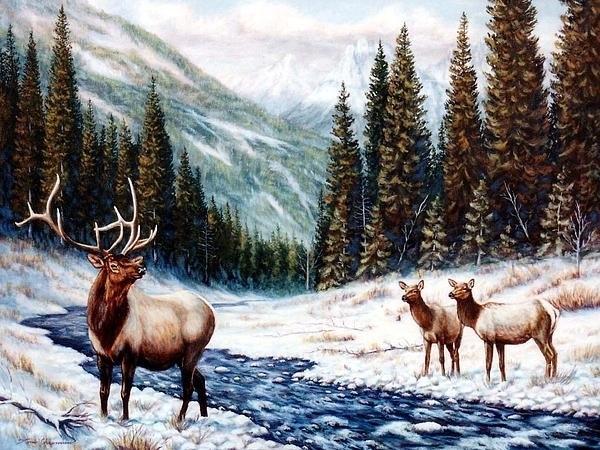 Tom  Chapman - The Wild Country Print