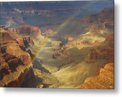 Peter Coskun - Royal Rainbow Print