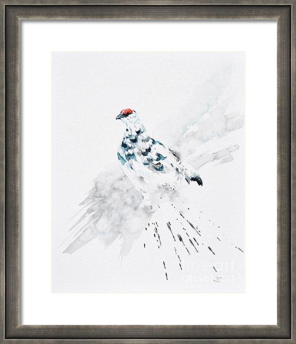 Zaira Dzhaubaeva - Rock Ptarmigan Print